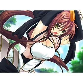 戦極姫 ~戦乱に舞う乙女達~(限定版)