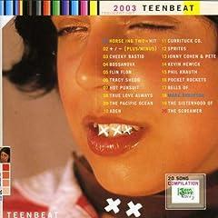 【クリックで詳細表示】Various Artists : Teenbeat Sampler 2003 - 音楽