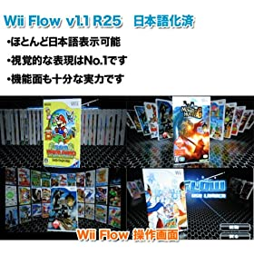  Wii+SD2GB+