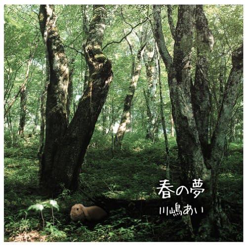 CrimsonRain.Com 日韓大碟推薦:川嶋あい - 春の夢