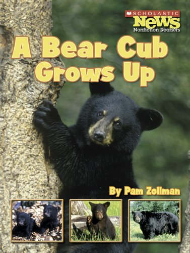A Bear Cub Grows Up