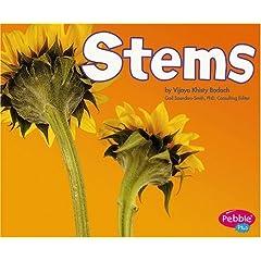 Stems (Pebble Plus)