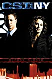 CSI New York: Bloody Murder (CSI: NY)