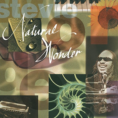 Stevie Wonder - Natural Wonder - Zortam Music