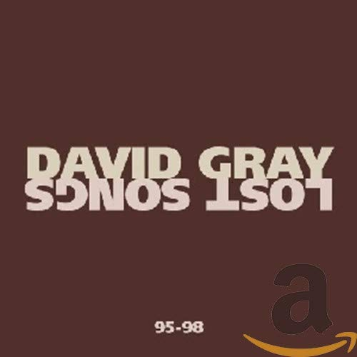 David Gray - Lost Songs 1995-1998 - Zortam Music
