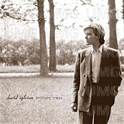 David Sylvian - Everything & Nothing - Bonus Disc - Lyrics2You