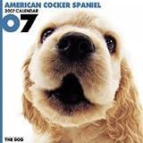 THE DOG アメリカン・コッカー・スパニエル 2007年 カレンダー